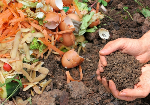 5 conseils pour réussir votre compost