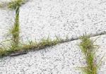 Peut-on utiliser un feutre géotextile pour éviter la pousse des mauvaises herbes ?