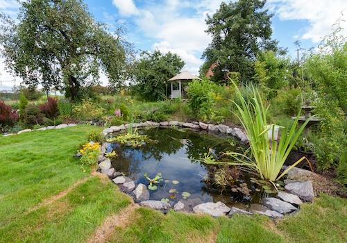 Comment installer un bassin de jardin ?